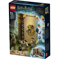 LEGO® 76384 Momento Hogwarts™: Clase de Herbología