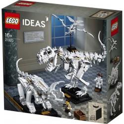 LEGO® 21320 Fósiles de Dinosaurio