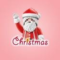 Playmobil® Navidad